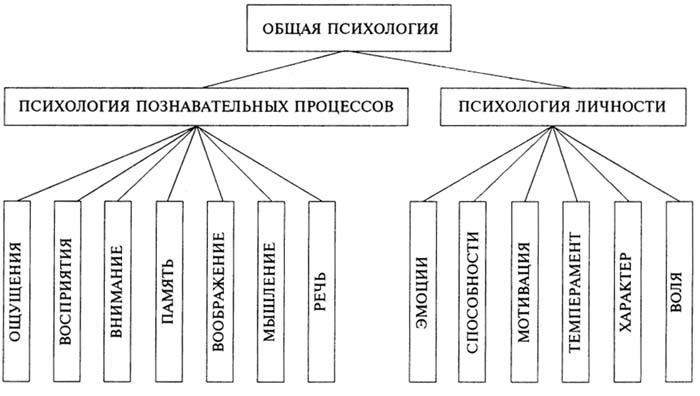 Эссе норма в педагогике и психологии 2242