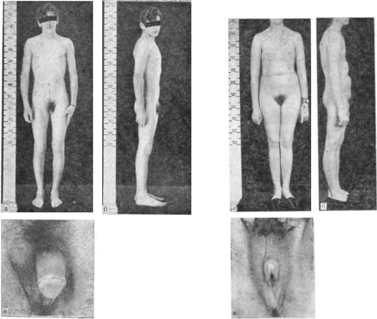 clinical-hermaphrodite-busty-naked-milf-gifs