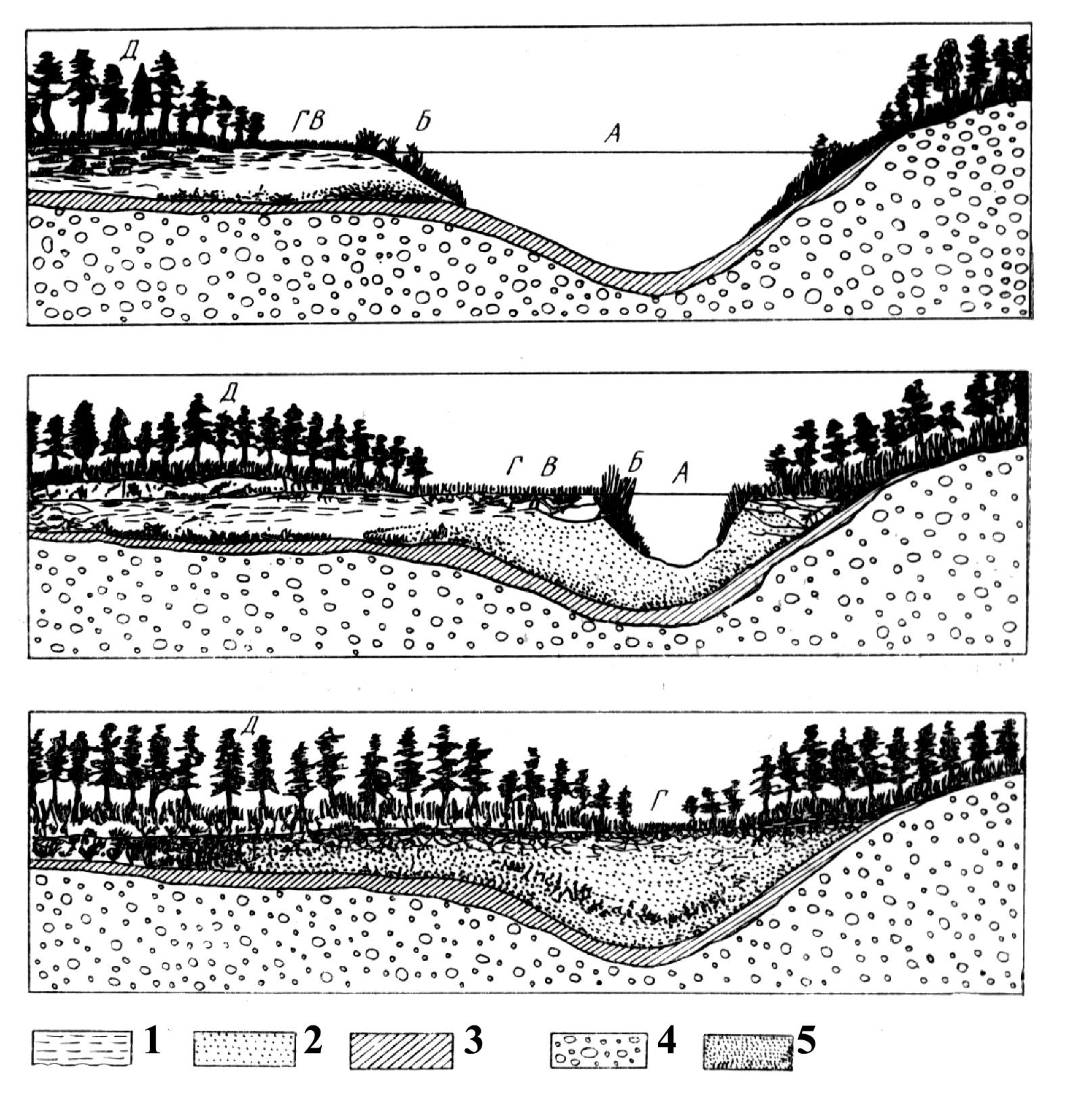 выборе термобелья болота и их геологическая роль лучше всех
