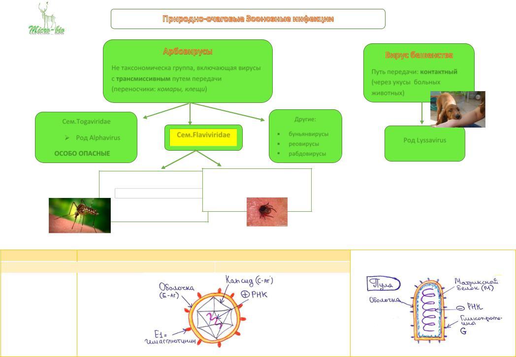 Природно очаговые инфекции реферат 2042