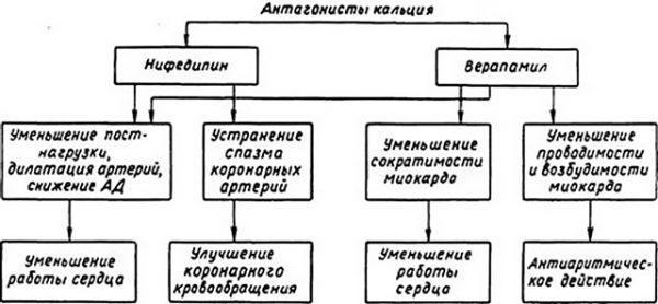 Ингибиторы апф список препаратов при гипертонии