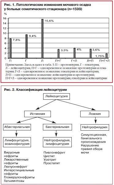 Анализ мочи по Нечипоренко: что показывает, расшифровка, норма у детей