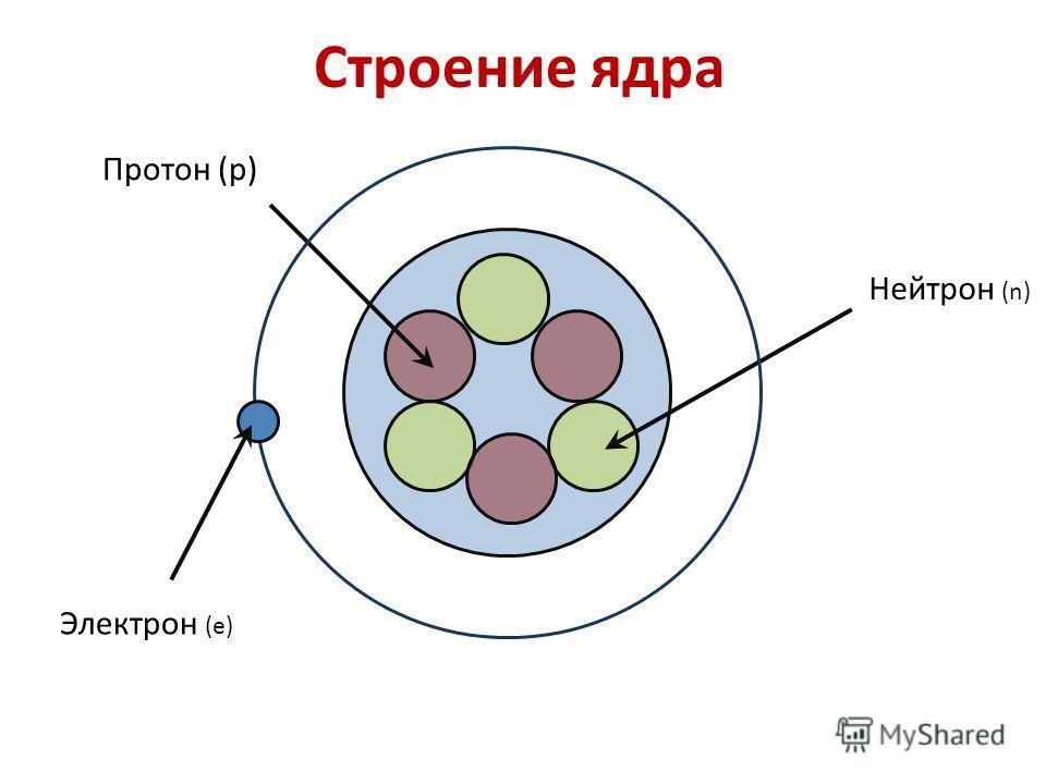 растение картинки строение атома ядра и электроны это