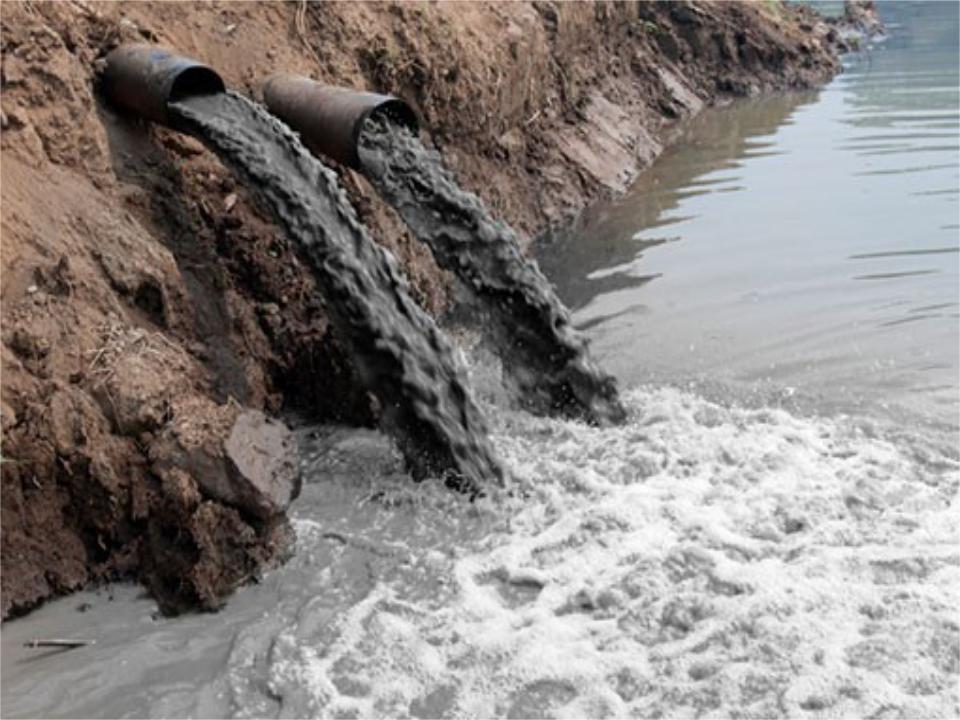 Загрязнение водного бассейна реферат 8078