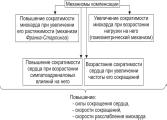 Сердечная недостаточность этиология и факторы
