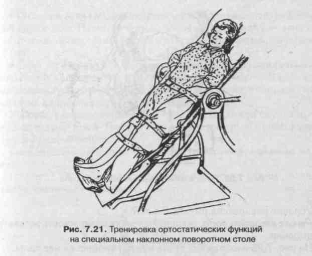 Соединение костей. Сустав как рычаг
