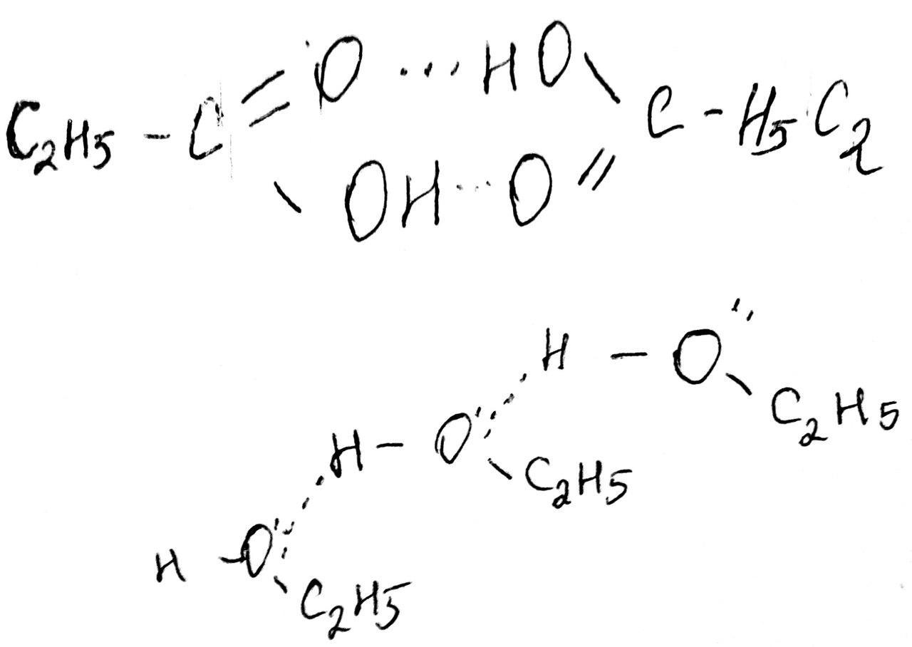 движение аминокислот в организме схема