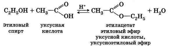 уксусная кислота изо амиловый спирт серная кислота запасаются обычно мужчины