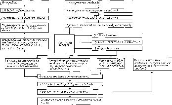 Схема технологического процесса в магазине фото 437