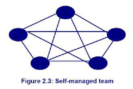 self management team