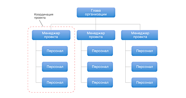 assignment 2 organizational structure