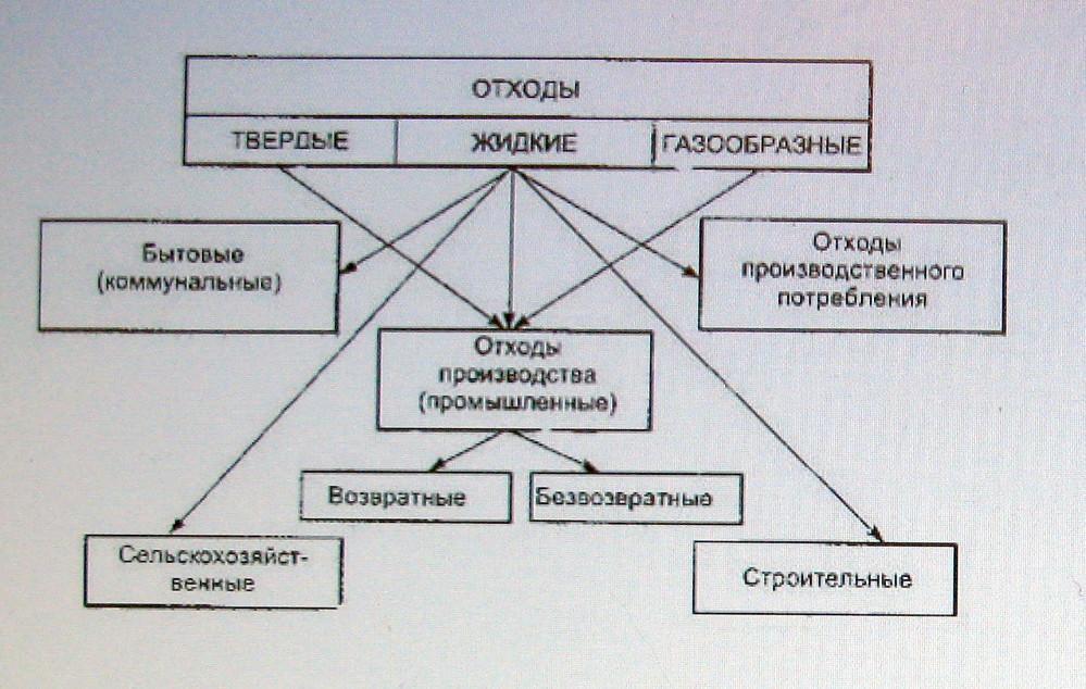 Организм человека как среда обитания паразитов