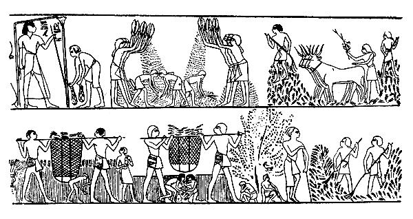 восьми жрецы в древней греции картинки живи настоящим, помни