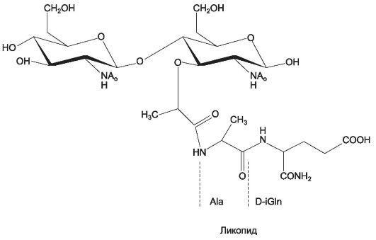 Современный препарат восстанавливающий обмен веществ в костных тканях Инъектран