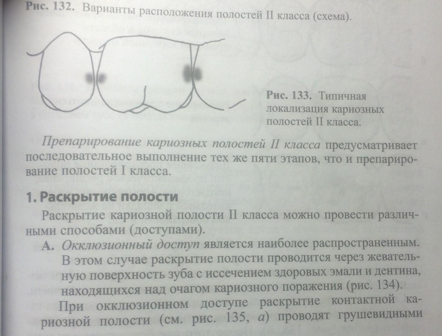 Вторые премоляры верхней челюсти анатомия строение функции