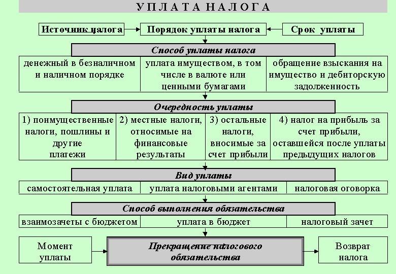 Исчисление и уплата налогов на турфирме мсфо 8 минфин