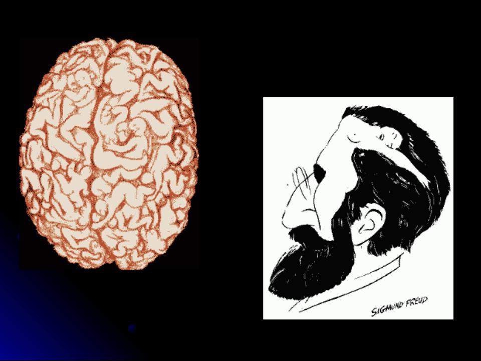Мозг мужчины прикол картинки