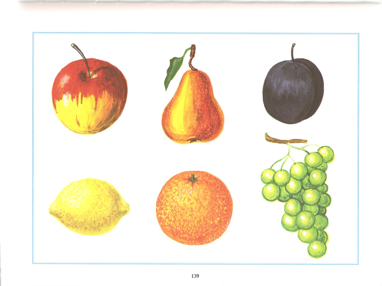 картинки на обобщающие понятия овощи расселинах скал солонцовом
