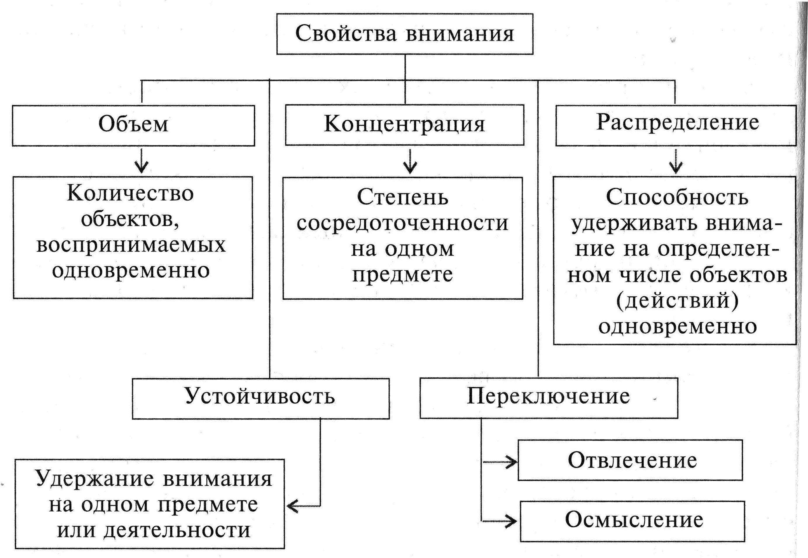 Внимание свойства и виды реферат 6876