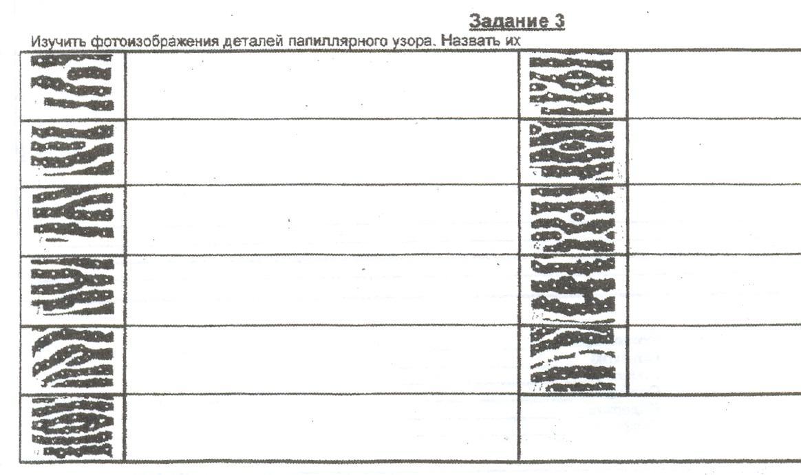 Схематическая зарисовка следа пальца фото 548