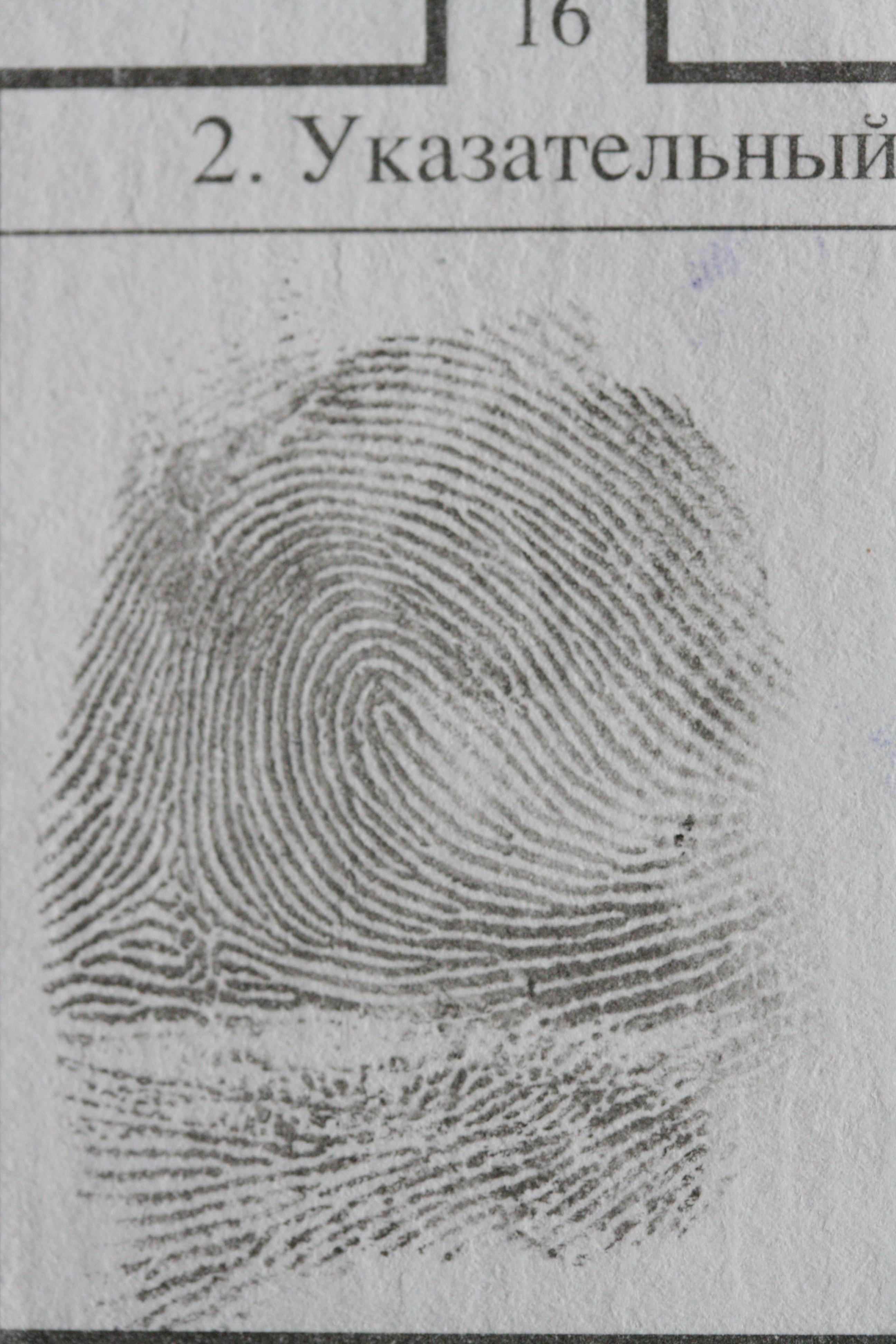 Схематическая зарисовка следа пальца фото 953