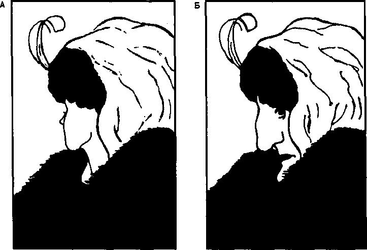 Тест картинка два в одном