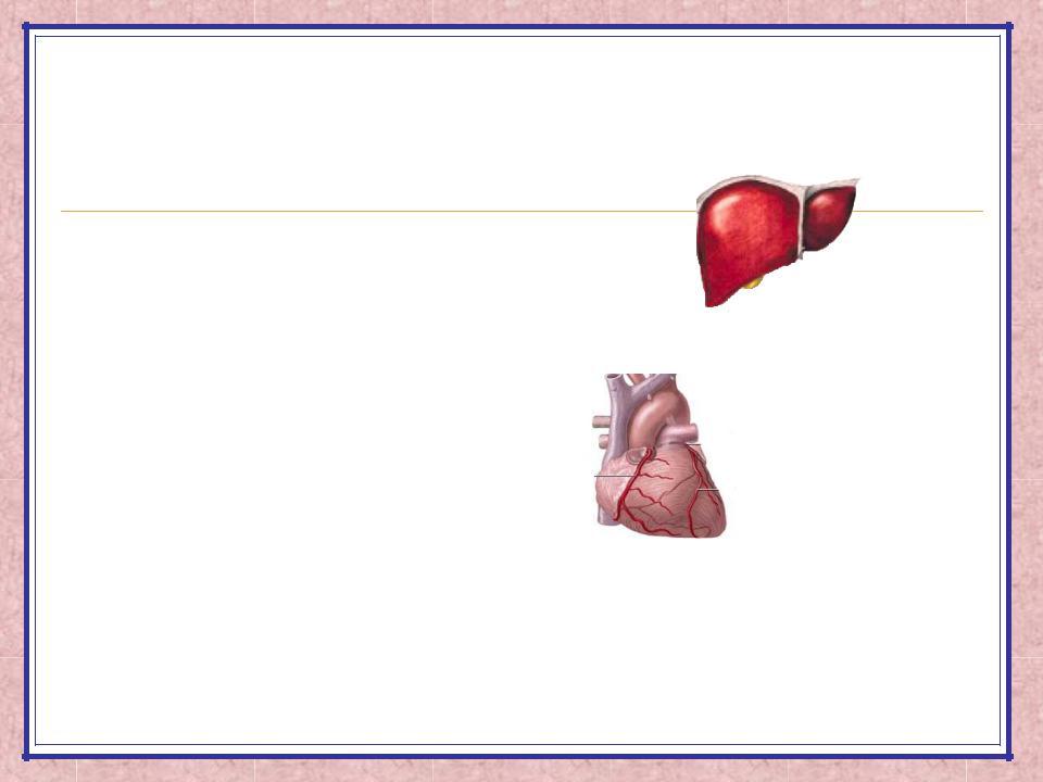 Аст алт инфаркт - Все про гипертонию