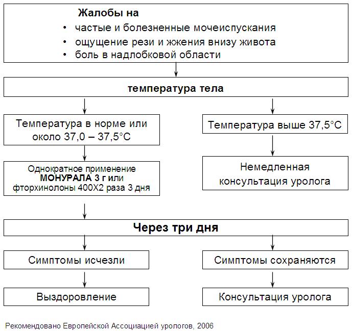 Типовая программа для студентов по урологии