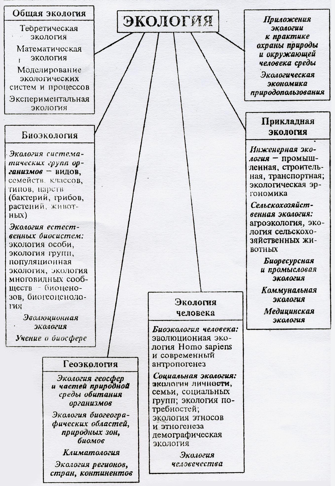 Структура макроэкологии шпаргалка