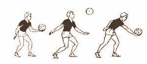 Волейбол верхняя и нижняя подача реферат 7993