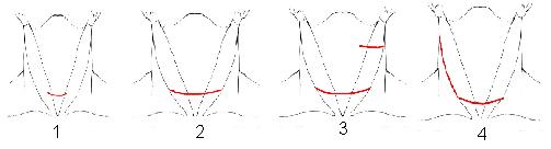 лобовое стекло доступ по кохеру щитовидная автосервиса Туле