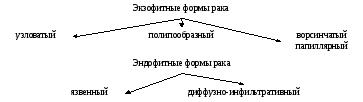 C48 Рак забрюшинного пространства и брюшины. Как развивается рак забрюшинного пространства Образование забрюшинного пространства слева