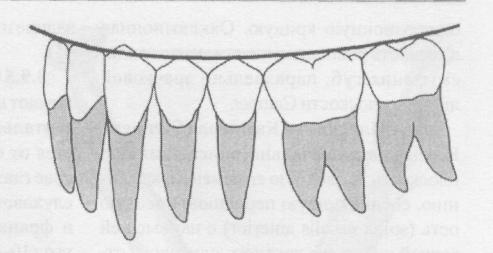 Форма височно нижнечелюстного сустава - Лечение Суставов
