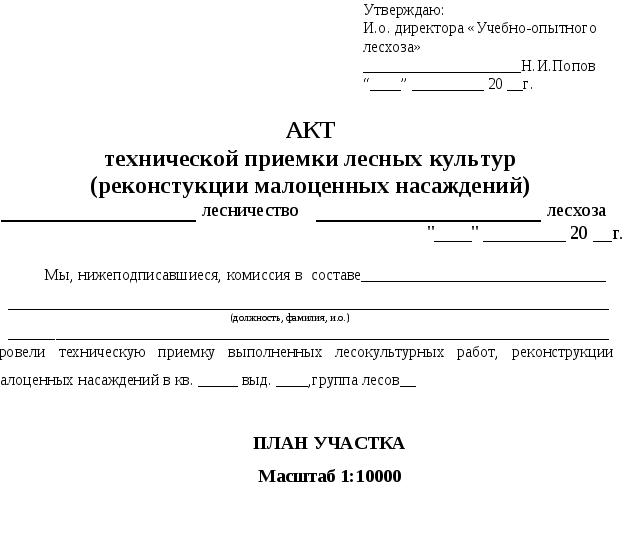 Структура отчета 23
