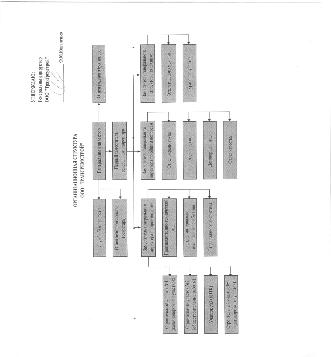 Характеристика организации  1 4 Структура управления организации