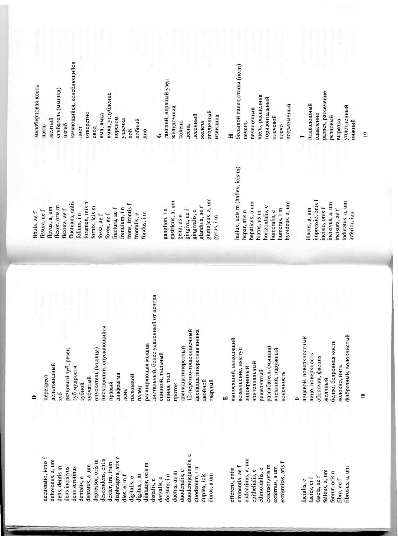duodenalis перевод с латыни