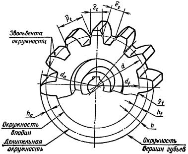 Размеры шестерни на чертеже