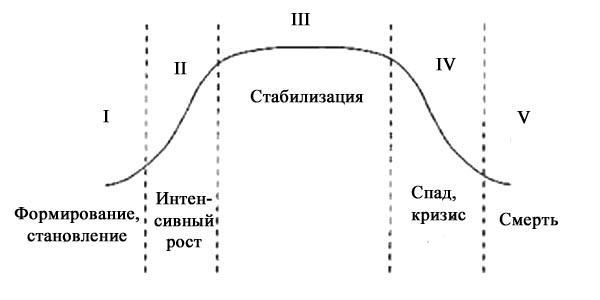 Курсовая работа жизненный цикл и стадии развития организации 7382