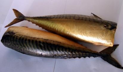 Рыба холодного копчения реферат 2809