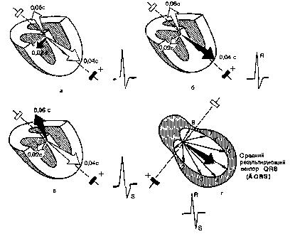 Калиевая проба Противопоказания  Лекарственные пробы  Болезни сердца и сосудов у детей
