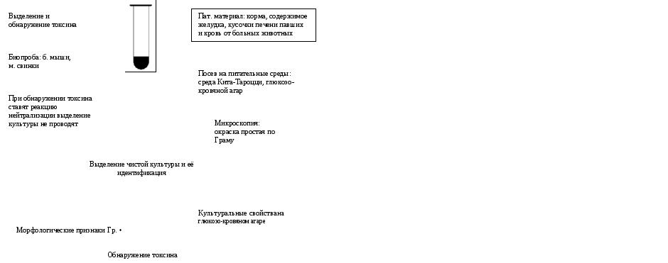 Возбудитель ботулизма микробиология реферат 4161