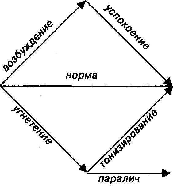 Суправентрикулярные экстрасистолы что это такое ⋆ Лечение Сердца