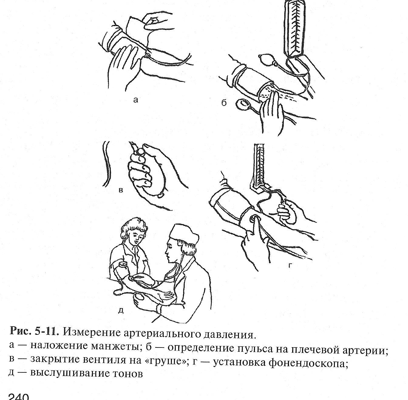 Исследование пульса — Студопедия
