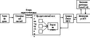 Слуховая сенсорная система строение и функции