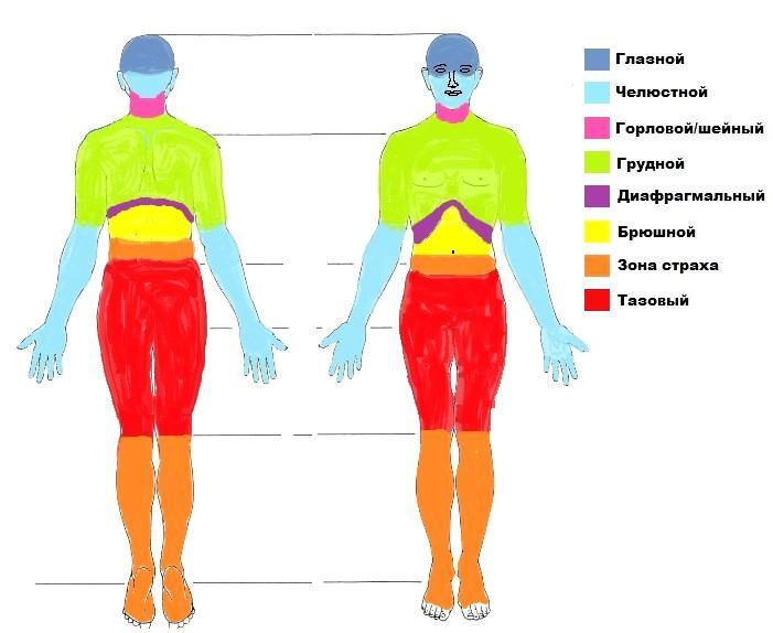 в образом с телесно-ориентированную тела введение знакомство психотерапию.