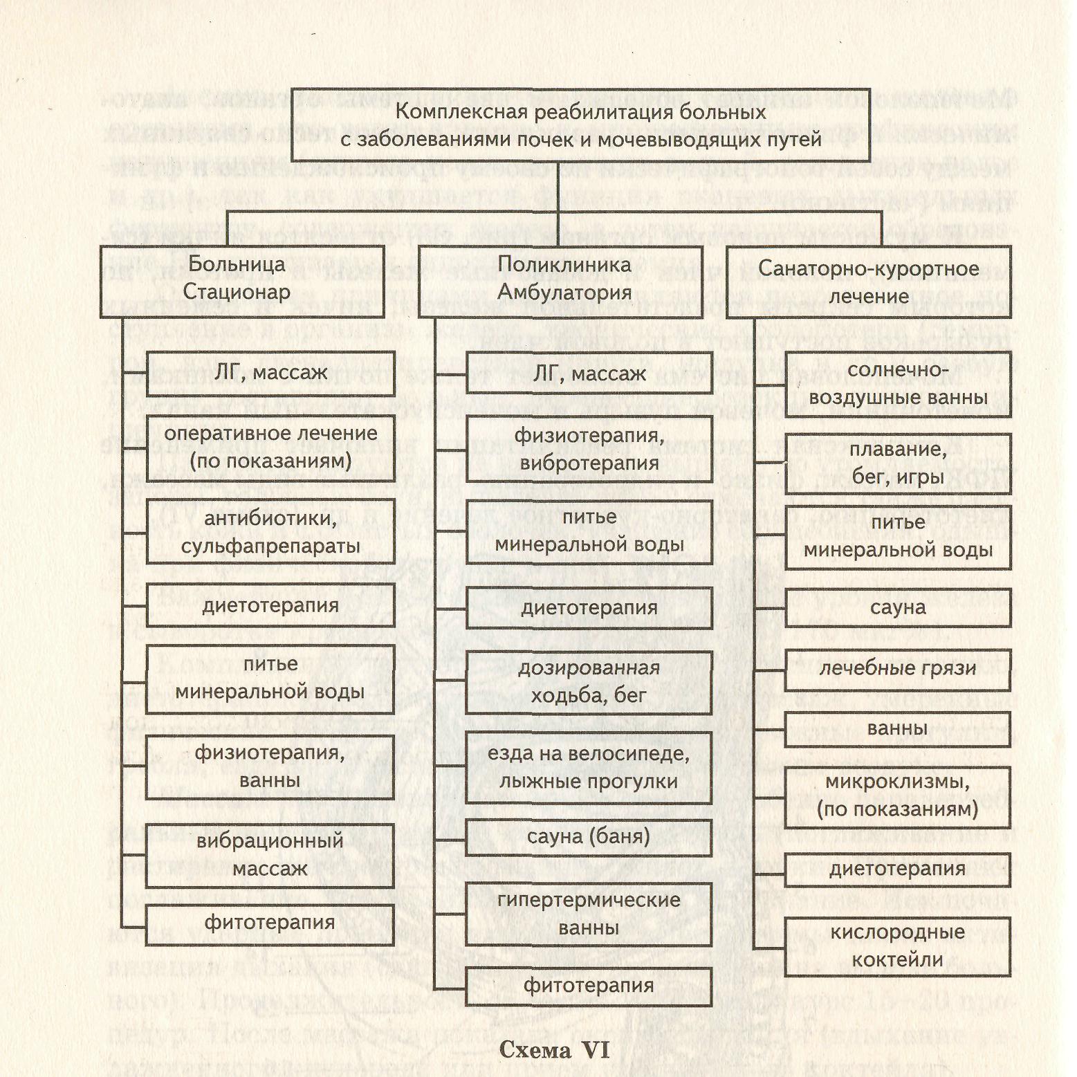 схема мочевыводящих путей