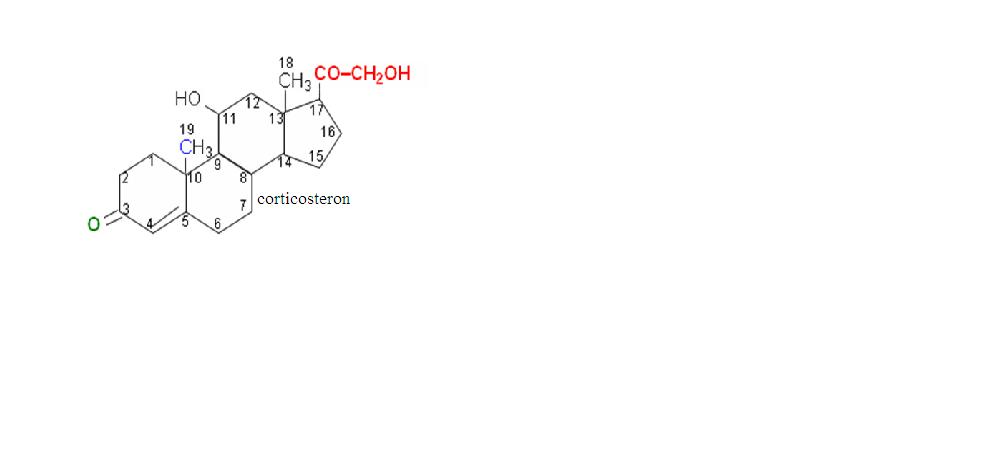 8.2. Les lipides complexes saponifiables