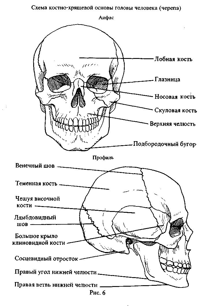 Открытки с видами череповца посадка унитазе