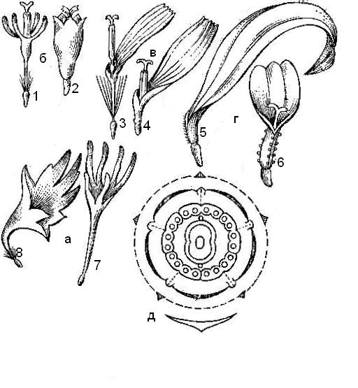 Мясные клубочки в слоеном тесте 19