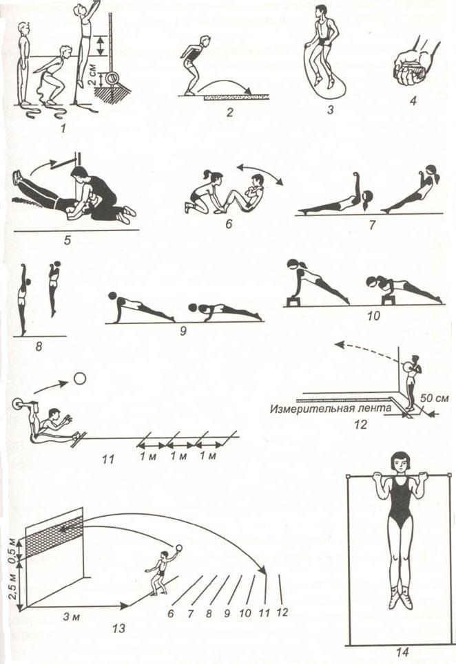 Контрольные упражнения тесты для определения уровня развития  Контрольные упражнения тесты для определения уровня развития силовых способностей